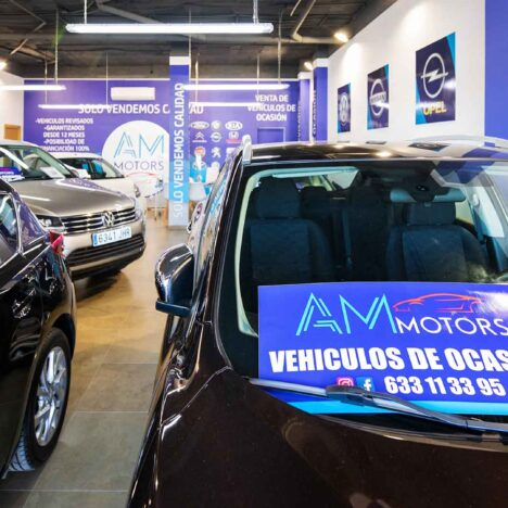 AMmotors, Automotriz, Vehículos
